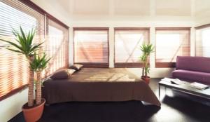 Pflanzen im Schlafzimmer - gut oder schlecht?